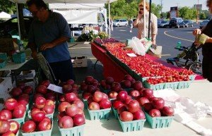 Ripe berries, cherries and apples at Tuckey's Mountain Grown at the Hollywood Farmers Market