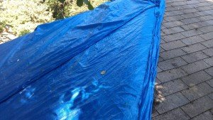Tarp on roof: New ordinance will require roofs be covered with proper materials