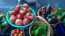 fruits-veg