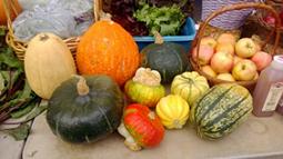 fall_produce