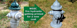 fire-hydrants